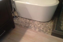 Remodeling Bathroom Surprise AZ